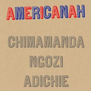 <i>Americanah</i> by Chimamanda Ngozi Adichie Review