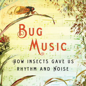 <i>Bug Music</i> by David Rothenberg