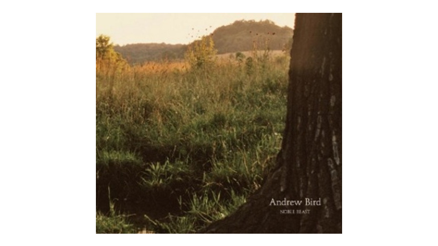 Andrew Bird: <em>Noble Beast</em>