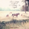 Bill Callahan: &lt;em&gt;Sometimes I Wish We Were An Eagle&lt;/em&gt;