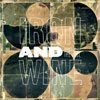 Iron &amp; Wine: &lt;em&gt;Around the Well&lt;/em&gt;