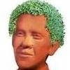 Finally, Barack Obama Immortalized as Chia Pet
