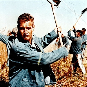 "The 10 Greatest Anti-Heroes: #8 ""Cool Hand"" Luke Jackson"