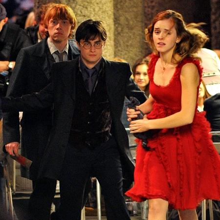 Harry Potter DVD Premiere To Stream Online