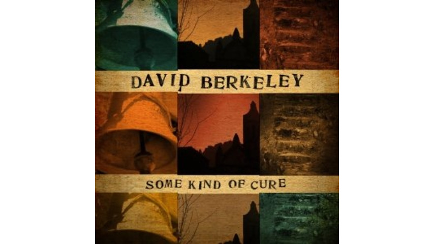David Berkeley: <i>Some Kind of Cure</i>