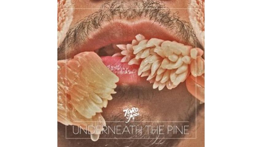 Toro y Moi: <i>Underneath The Pine</i>
