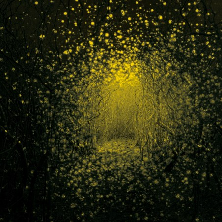 The Antlers Release <i>Burst Apart</i> This May