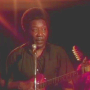 Muddy Waters: Got My Mojo Working
