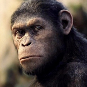 Rise of Planet of the Apes