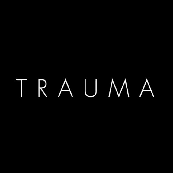 <em>Trauma</em> Review <br>(PC)