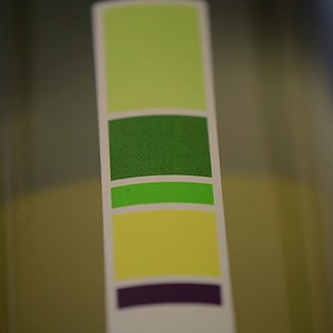 Uproot Sauvignon Blanc Review: Unpretentious And Fun. No Really.