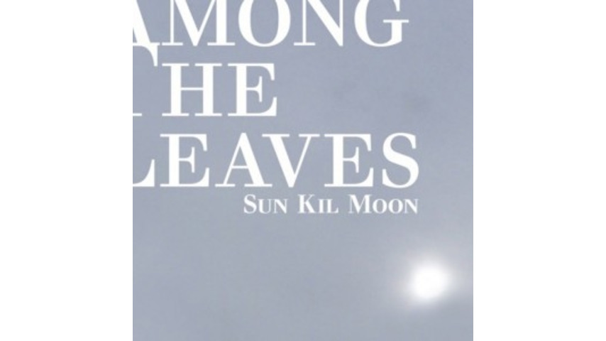 Sun Kil Moon: <i>Among the Leaves</i>