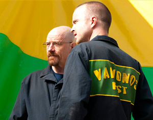 "<i>Breaking Bad</i> Review: ""Hazard Pay"" (Episode 5.03)"