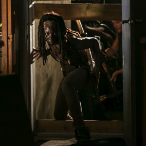 "<i>The Walking Dead</i> Review (Episode 3.8 ""Made To Suffer"")"