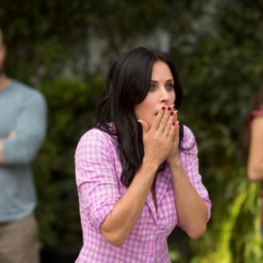 "<i>Cougar Town</i> Review: ""Restless"" (Episode 4.06)"