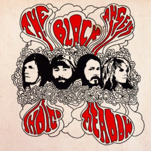 The Black Angels: <i>Indigo Meadow</i>