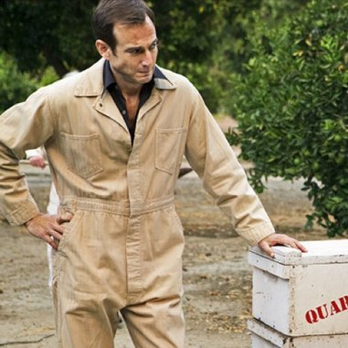 "<i>Arrested Development</i> Review: ""Colony Collapse"" (Episode 4.7)"