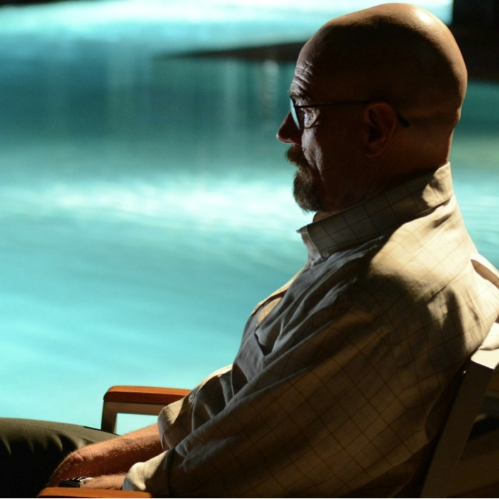 "<i>Breaking Bad</i> Review: ""Rabid Dog"" (Episode 5.12)"
