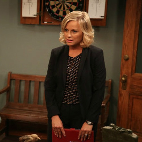 "<em>Parks and Recreation</em> Review: ""Doppelgängers"" (Episode 6.04)"