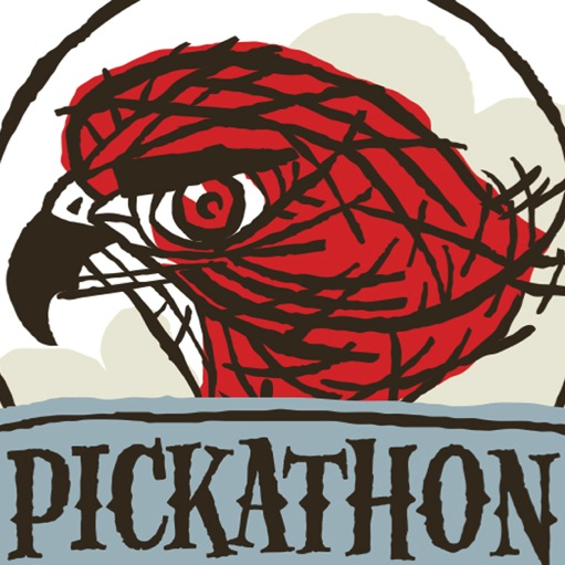 Pickathon is Not a Dream