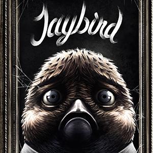 <i>Jaybird</i> by Jaakko Ahonen and Lauri Ahonen Review