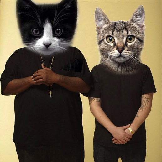A Conversation with Sly Jones, the Man Behind the <i>Meow the Jewels</i> Kickstarter