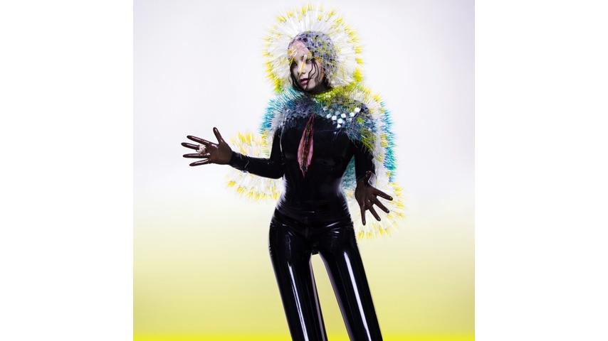 Björk: <i>Vulnicura</i> Review