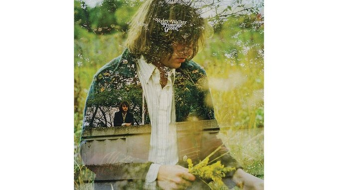 Ryley Walker: <i>Primrose Green</i> Review
