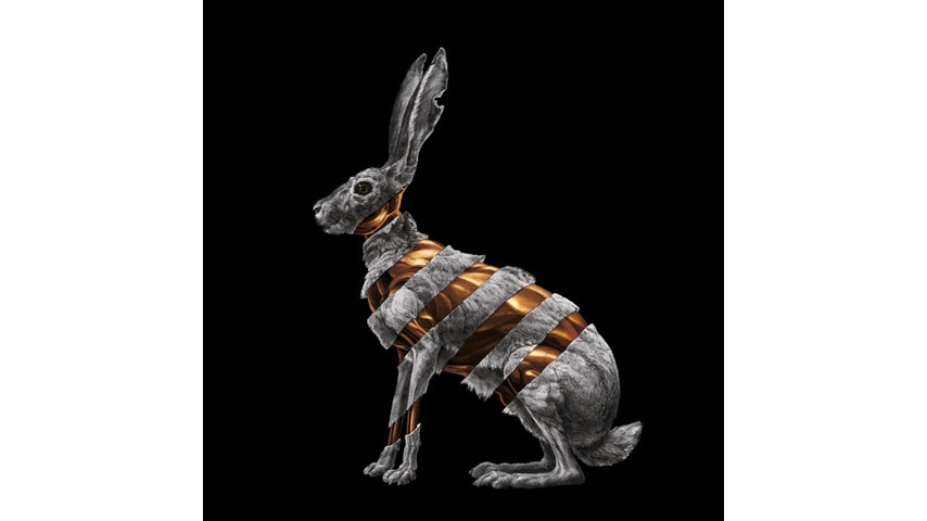 San Fermin: <i>Jackrabbit</i> Review