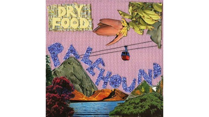 Palehound: <i>Dry Food</i> Review