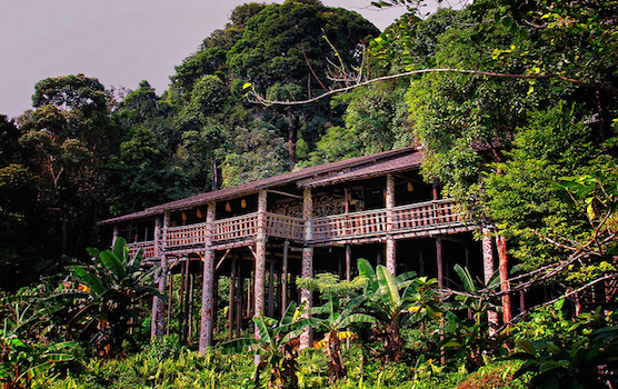 Return to the Jungle: A Guide to Visiting the Sarawak Longhouses
