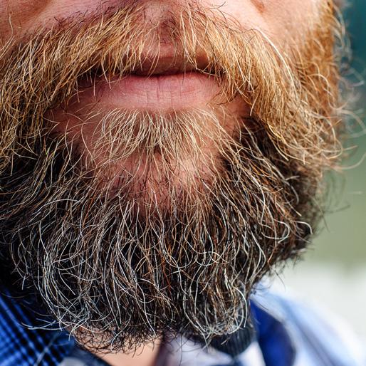 The Great Beard Debacle