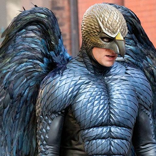 <i>Birdman</i>