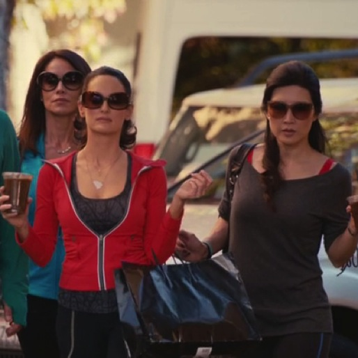"<i>Cougar Town</i> Review: ""Two Men Talking"""