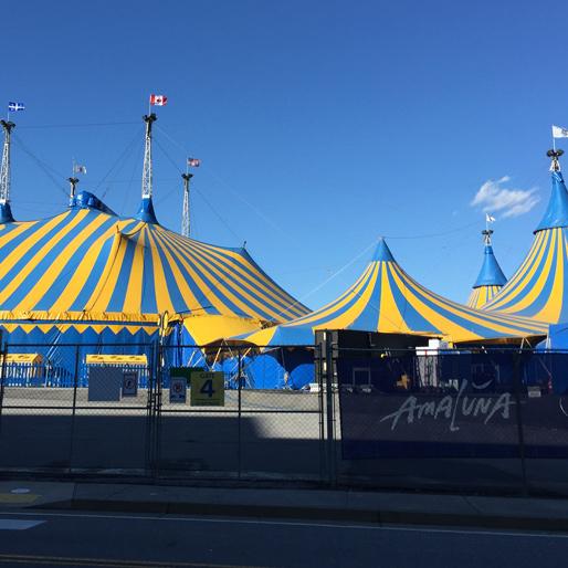 Cirque du Soleil's <i>Amaluna</i>: From Concept to Creation