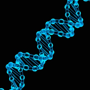 Scientists Experiment With DNA to Create Thinner, Lighter Electronics