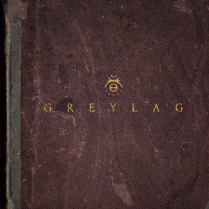 Greylag: The Best of What's Next