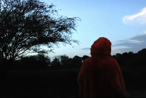 Watch Explosions in the Sky's New Video