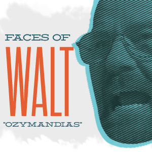 "Infographic: The Faces of Walter White in ""Ozymandias"""