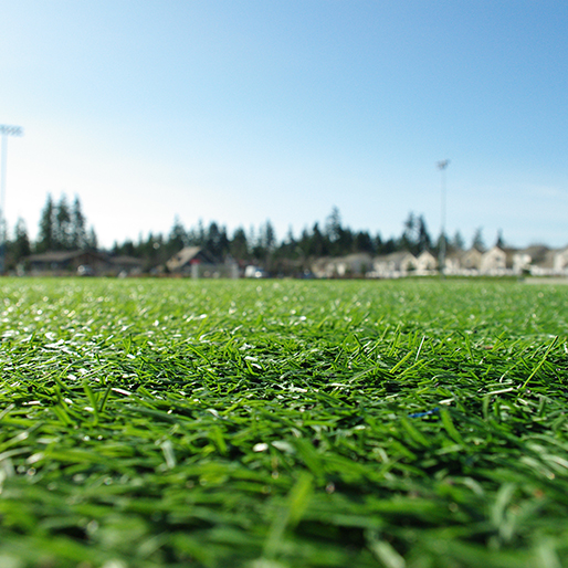 Attorneys Threaten Legal Action Over Women's World Cup Turf
