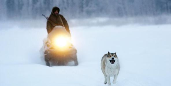 &lt;i&gt;Happy People: A Life in the Taiga&lt;/i&gt;