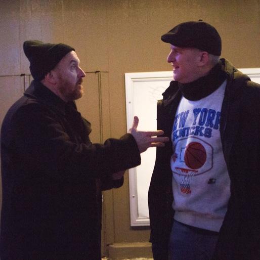 "<i>Louie</i> Review: ""Cop Story"""