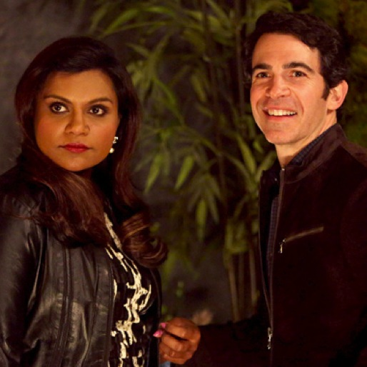 """<i>The Mindy Project</i> Review: """"Stanford"""""""