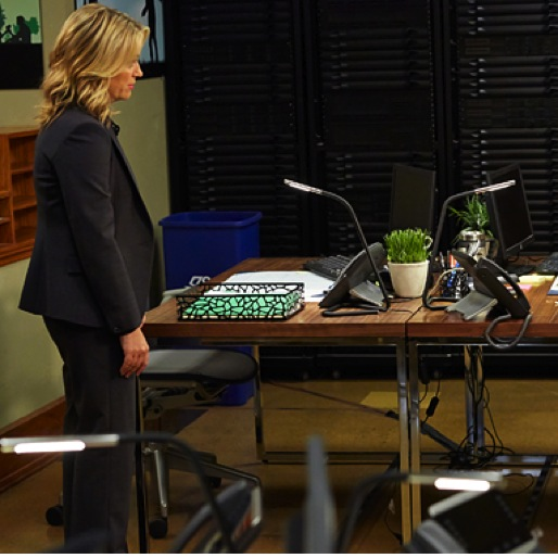 """<i>Parks and Recreation</i> Review: """"William Henry Harrison""""/""""Leslie And Ron"""""""