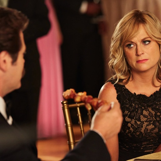 """<i>Parks and Recreation</i> Review: """"2017"""""""