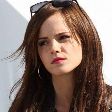 <i>The Bling Ring</i> (2013 Cannes review)