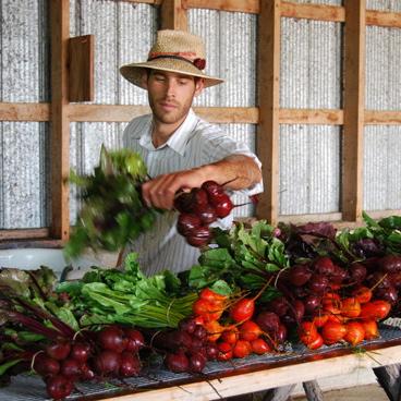 <i>To Make a Farm</i>