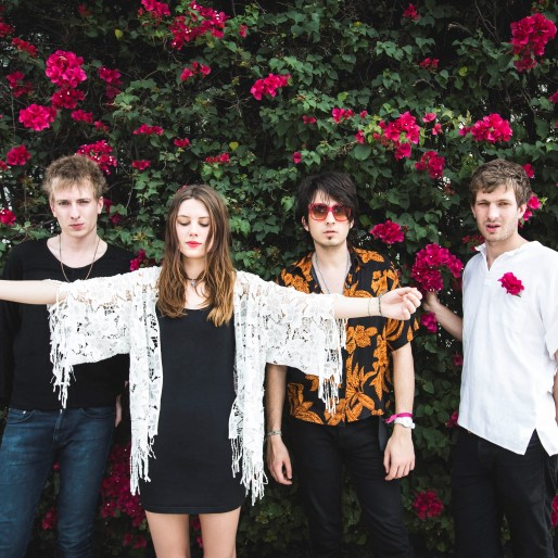 Wolf Alice: The Best of What's Next