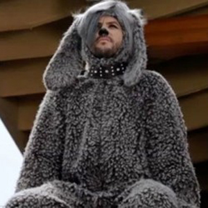 """<i>Wilfred</i> Review: """"Now"""" (Episode 2.04)"""