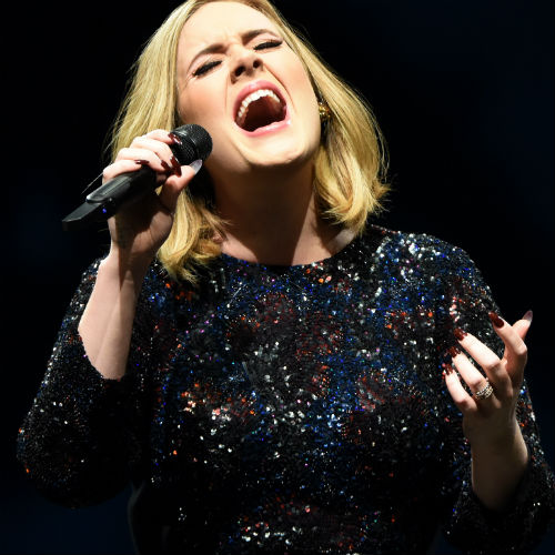 Adele Confirmed to Perform <i>Skyfall</i> Theme Song